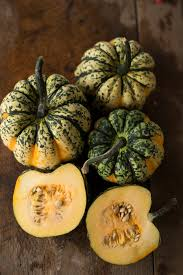 Buy Squash Seeds Online Squash Seeds For Sale