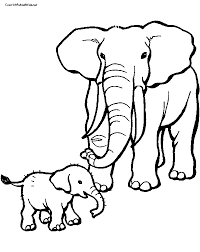 elephant coloring pages coloring pages kids 8997