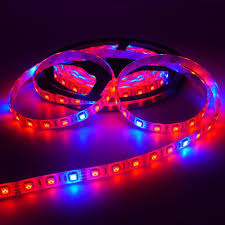 5050 led light strip 300leds 5050 led flexible strip grow light red blue 5 1 4 1 ip65