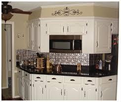 Kitchen Metal Backsplash Ideas Interior Personable Backsplash Panels Uk Glass Panel Aluminum