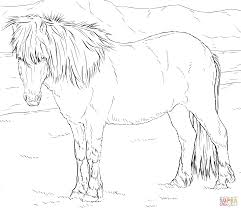 free printable horse coloring pages for kids at realistic
