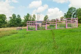 Family Garden Brooklyn Garden Reveal U2013 Here It Is Brooklyn Farm