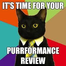 Origin Of Meme - the business cat meme origin and online use dogalize