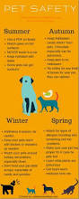 Make Bathtime Fun For Your Dog Best 25 Dog Care Tips Ideas On Pinterest Dog Care Puppy Care