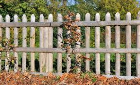 cloture jardin bois clôture de jardin en bois habitatpresto