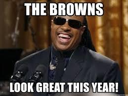 Stevie Wonder Memes - the browns look great this year stevie wonder laugh meme