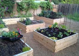 organic raised bed gardening soil home decorating interior