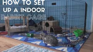 Diy Indoor Rabbit Hutch How To Set Up A Indoor Rabbit Cage Youtube