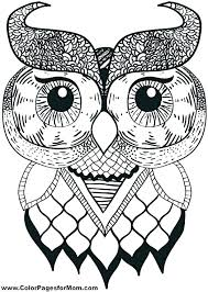 coloring page for adults owl coloring pages of owls for adults as coloring sheets of owls moon