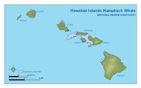 map of hawaii island hawaiian islands humpback whale library maps charts and gis data
