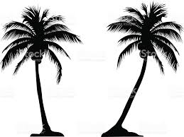 palm tree couple stock vector art 165032576 istock