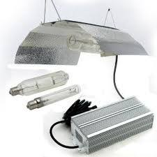 types of grow lights what are flourescents and how these lights are useful for indoor