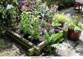 wooden planters stock photos u0026 wooden planters stock images alamy