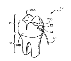 remarkable tooth coloring pages printable image marvelous