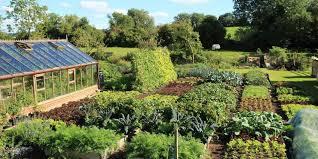 small kitchen garden ideas organic gardening planting garden home vegetable garden ideas