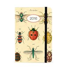 cavallini planner cavallini papers 2016 insects weekly planner 4 x 6 eco paper at