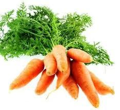 cuisiner les fanes de carottes cuisiner les fanes de carottes de de radis de navets ne mets