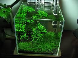 Aquascape Construction Epoxy 37 Best Fish Tanks Images On Pinterest Aquarium Ideas Fish