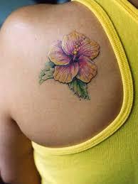 více než 25 nejlepších nápadů na pinterestu na téma hibiscus