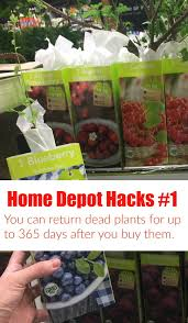 home depot black friday plant sale 36 home depot hacks you u0027ll regret not knowing the krazy coupon lady