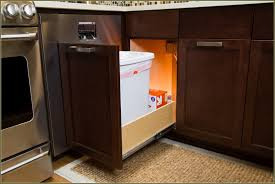 Kitchen Trash Can Ideas Under Cabinet Trash Can Pull Out Home Design Ideas