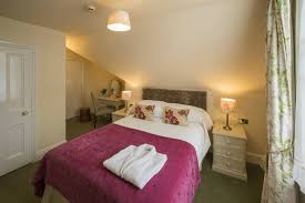 single room yorke lodge bed and breakfast canterbury kent uk