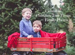 2 columbus christmas tree farms family photos what should we