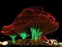 outdoor christmas lights for bushes diy christmas home outdoor lighting ideas light simple lights for