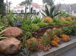 Best Rock Gardens 7 Front Yard Gardens Called San Clemente S Best Rock Garden