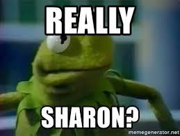 Kermit Meme Generator - really sharon angry kermit meme generator