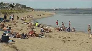 cape cod beaches closed to swimming necn