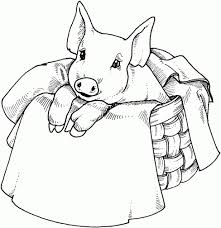 Get This Cute Pig Coloring Pages 83nl1 Pig Coloring Pages