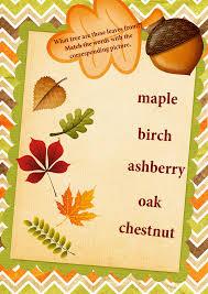 trees leaves names matching worksheet english for kids