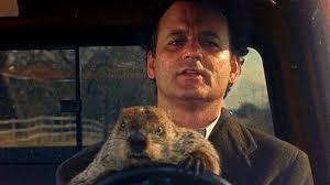 Bill Murray Groundhog Day Meme - groundhog day critics round up
