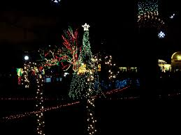 Chicago Lincoln Park Zoo Lights by Christmas Lights Chicago Christmas Lights Decoration