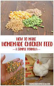 298 best chicken and garden stuff images on pinterest raising