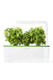 Easy Herbs To Grow Inside 15 Indoor Herb Garden Ideas Kitchen Herb Planters