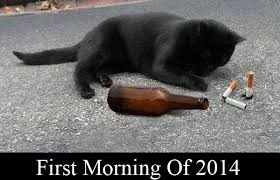 Funny Costumes 2014 15 Widescreen Wallpaper Funnypicture Org by Funny Black Cat Pictures 15 Hd Wallpaper Funnypicture Org