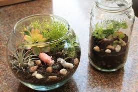 Garden Crafts For Kids - earth day craft for kids make a mini terrarium marin mommies