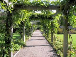 what is a pergola pergola defined design ideas q u0026a the