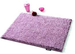 Purple Bathroom Rugs Purple Bathroom Rugs Maslinovoulje Me