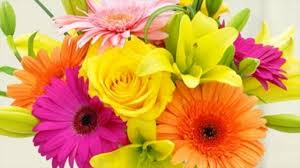 Flower Shops by Small Flower Shops Available Stocks Roses Daisies Youtube