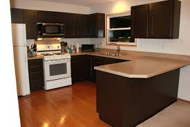 Professional Spray Painting Kitchen Cabinets by Antique Paint Finishes For Kitchen Cabinets Image Of What Kind Of