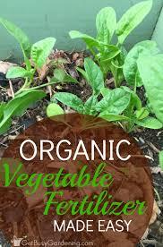 organic vegetable fertilizer made easy
