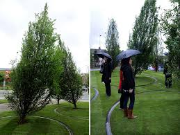 diller scofidio renfro trees at liverpool biennial