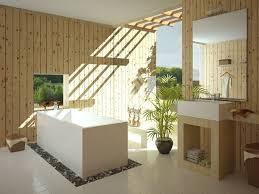 Open Bathroom Design 201 Best Bathroom Tropical Images On Pinterest Bathroom Ideas
