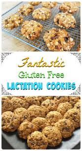 Lactation Cookies Where To Buy Easy Lactation Cookies 1 Pkg Cookie Mix 1 Tbsp Brewers Yeast 1