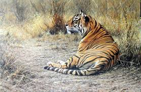 original tiger paintings