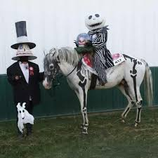 Halloween Costumes Horse 42 Horse Costumes Images Horses Horse