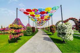 the most beautiful flower garden dubai placesamazing